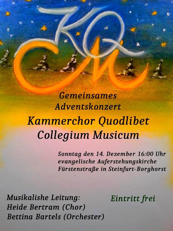 Zusammen mit dem Collegium Musicum gaben wir ein weihnachtliches Konzert.